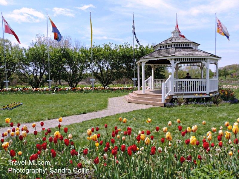 Holland Michigan Tulip Time-Windmill Gardens