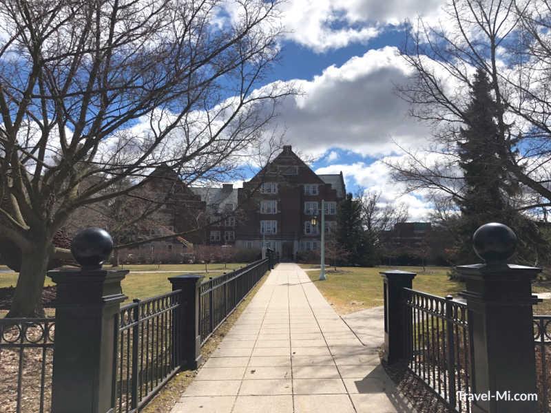 MSU Campus