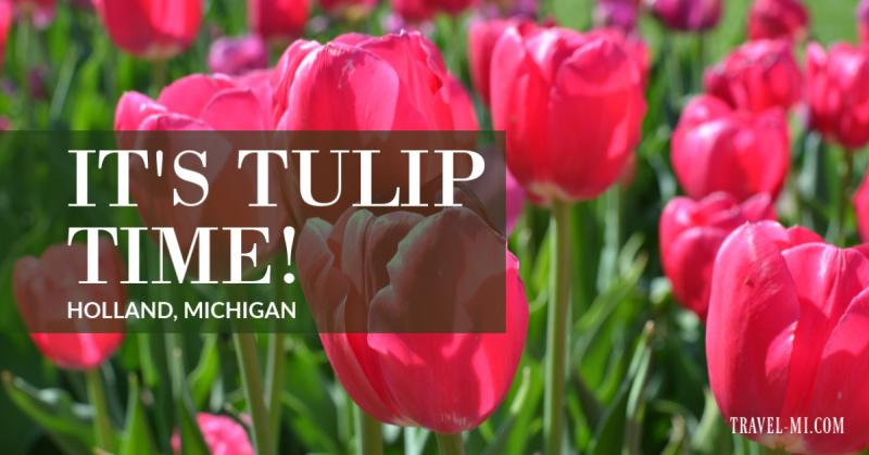 Holland Tulip Time