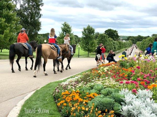 Mackinac Island Horse Rentals