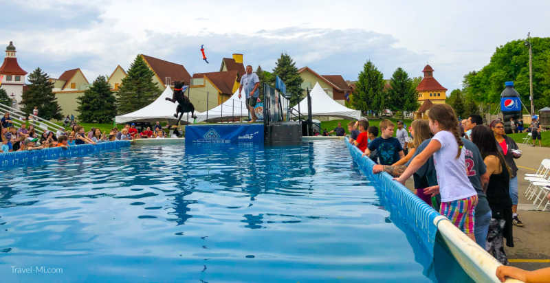 The Frankenmuth Dog Bowl is the ultimutt in furiffic fun in Michigan! Held every Memorial Day Weekend in Frankenmuth, Michigan, this high energy dog event is a favorite among kids and adults!