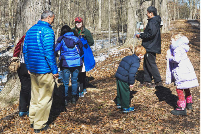 Maple Syrup Day, Chippewa Nature Center, Midland, MI
