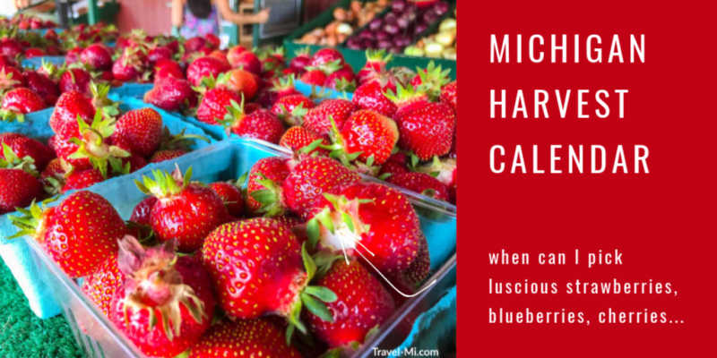 Michigan Harvest Calendar-Availability Guide for Michigan Fruits and Vegetables