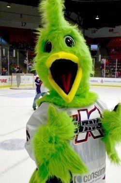 Kalamazoo Wings Hockey