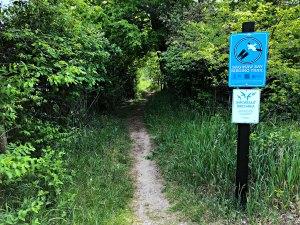 Saginaw Birding Trail, Tawas State Park