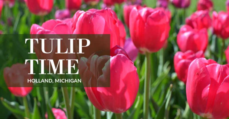 Holland Tulip Time Festival