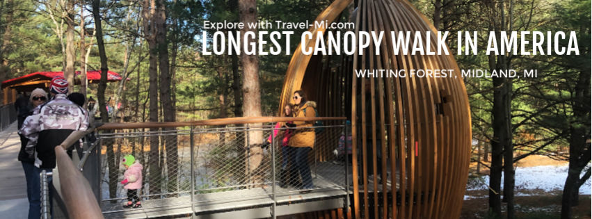 Longest Canopy Walk in America, Whiting Forest