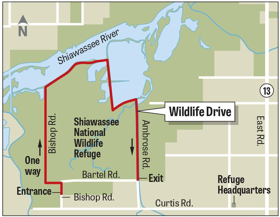 Wildlife Drive at Shiawassee National Wildlife Refuge