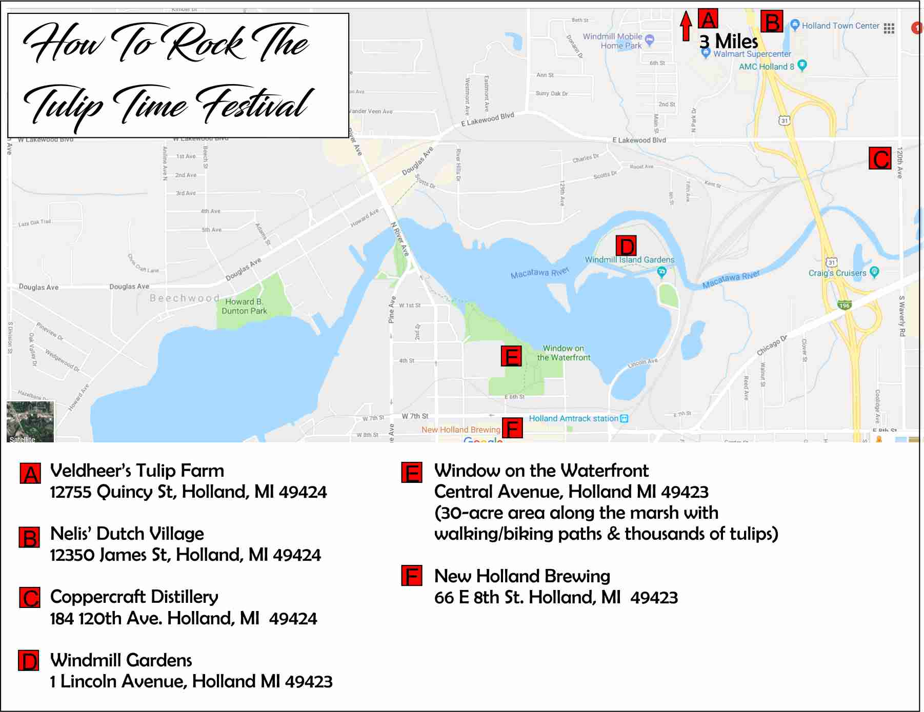 Holland Tulip Time Map