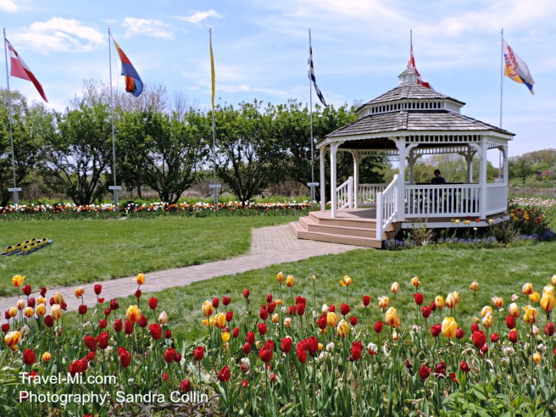 Holland Michigan Tulip Time-Windmill Gardens